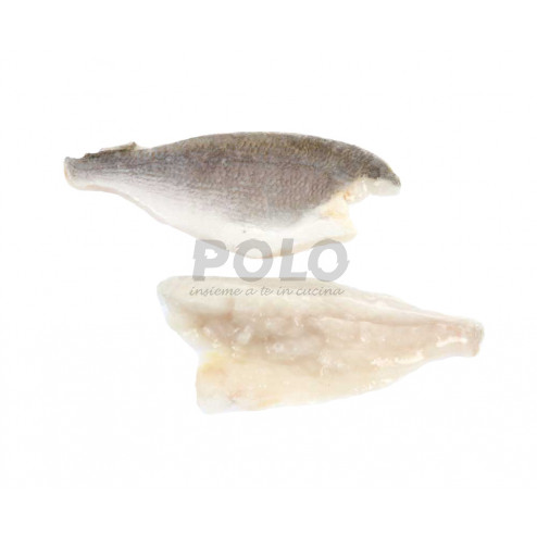Filetto orata c/p 80/120 gr - 06105410