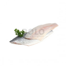 Filetti branzino 100/120 turchia
