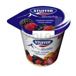 Yogurt intero frutta assortito